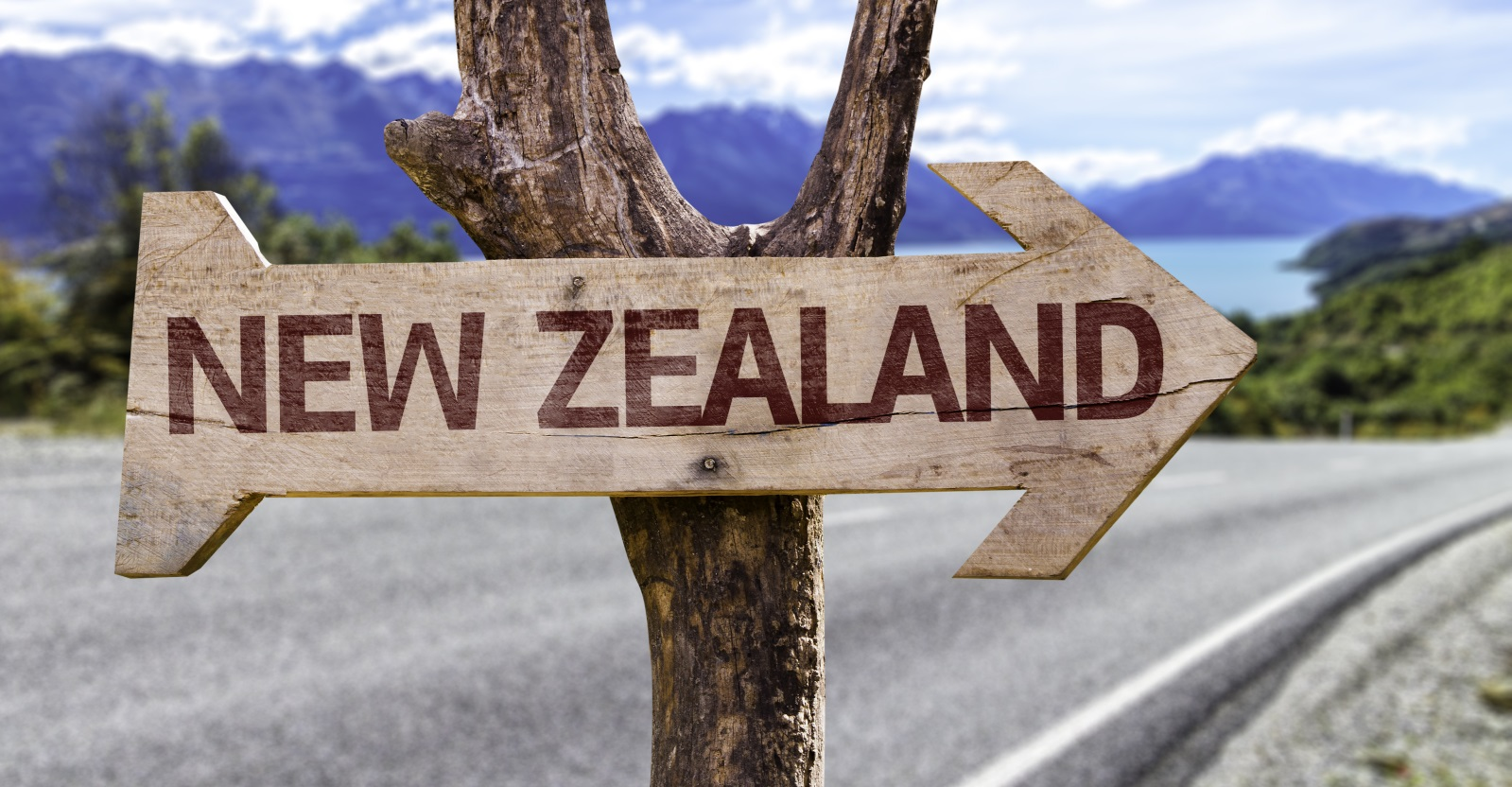 New zealand immigration adviser look out for immigration scams new zealand nz immigration lawyer solutioingenieria Image collections